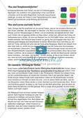Stempeln und Drucken: Fliegende Schirmchen Preview 6