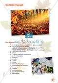 Stempeln und Drucken: Das Blätter-Paarspiel Preview 11