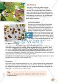 Stempeln und Drucken: Das Blätter-Paarspiel Preview 12