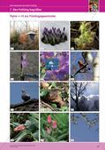 Jahreszeiten mit allen Sinnen erleben: Frühling Preview 15