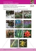 Jahreszeiten mit allen Sinnen erleben: Frühling Preview 17