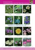 Jahreszeiten mit allen Sinnen erleben: Frühling Preview 19