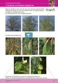 Jahreszeiten mit allen Sinnen erleben: Frühling Preview 21