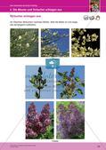 Jahreszeiten mit allen Sinnen erleben: Frühling Preview 22