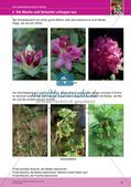 Jahreszeiten mit allen Sinnen erleben: Frühling Preview 23
