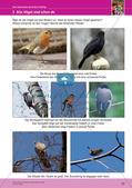 Jahreszeiten mit allen Sinnen erleben: Frühling Preview 25