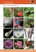 Erleben der Jahreszeiten mit allen Sinnen: Herbst Preview 15