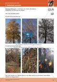 Erleben der Jahreszeiten mit allen Sinnen: Herbst Preview 17