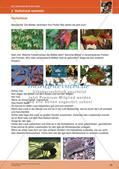 Erleben der Jahreszeiten mit allen Sinnen: Herbst Preview 18