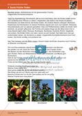 Erleben der Jahreszeiten mit allen Sinnen: Herbst Preview 21