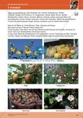 Erleben der Jahreszeiten mit allen Sinnen: Herbst Preview 26