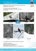 Erleben der Jahreszeiten mit allen Sinnen: Winter Preview 17