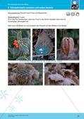 Erleben der Jahreszeiten mit allen Sinnen: Winter Preview 22