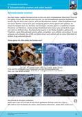 Erleben der Jahreszeiten mit allen Sinnen: Winter Preview 23