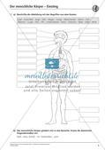 Anatomie: Körperteile und Organe Preview 4