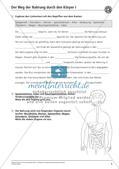 Verdauung: Weg der Nahrung durch den Körper Preview 5