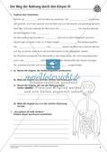 Verdauung: Weg der Nahrung durch den Körper Preview 7