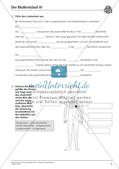 Anatomie: Blutkreislauf Preview 7