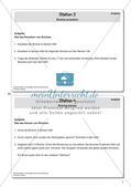 Die Grundlagen der Bruchrechnung Preview 9