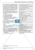 Die Grundrechenarten mit Bruchzahlen Preview 6