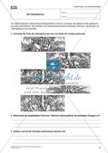 Die frühe Neuzeit: Die Reformation und die Glaubenskriege Preview 4