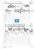Das geometrische Zeichnen: Linien und Strecken Preview 10