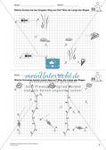 Das geometrische Zeichnen: Linien und Strecken Preview 11