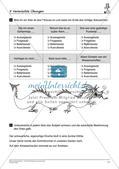 Satzlehre: Vermischte Übungen und Lernkontrolle Preview 13