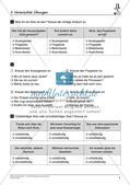 Satzlehre: Vermischte Übungen und Lernkontrolle Preview 6
