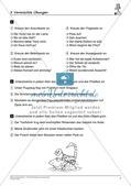Satzlehre: Vermischte Übungen und Lernkontrolle Preview 9