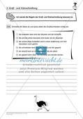 Rechtschreibtraining: Groß- und Kleinschreibung Preview 4