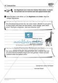 Rechtschreibtraining: Satzzeichen Preview 11