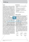 Schwungübungen: Blanko-Vorlagen und Deckblatt Preview 3