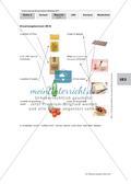 Intercultural Encounters - Eating habits Preview 4