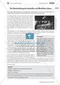 Hitlers Gleichschaltung - Anpassung aller Institutionen Preview 7