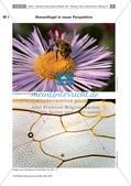 Biologie_neu, Sekundarstufe I, Zellbiologie, Aufbau und Funktionen der Zellbestandteile, Tierische und pflanzliche Zellen, Differenzierung, motivierender Einstieg, mikroskopisches Präparat, Beobachten