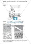 Erforschen von Zellen: Arbeit mit dem Lichtmikroskop Preview 5