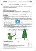 Der Baum: Messen der Höhe, Artenkenntnis, Bewohner Preview 1