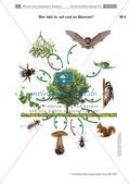 Der Baum: Messen der Höhe, Artenkenntnis, Bewohner Preview 6