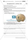 Der Baum: Höhe und Dicke, Kettenquiz, Test Preview 4