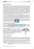 Transportsysteme in der Natur: Selbstähnlichkeit Preview 9