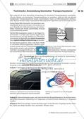 Transportsysteme in der Natur: Verzweigungsarten, Volumenstrom und technische Anwendung Preview 7
