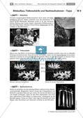 Die Lochkamera: Funktion der Fotografie Preview 11