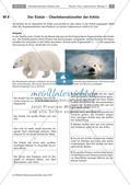 Überlebenskünstler in Extremräumen - Angepasstheiten untersuchen Preview 6