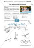 Der Schminkkoffer der alten Ägypter: Kosmetikprodukte herstellen Preview 1