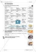 Gemeinsames Essen - Anwenden und Üben des Wortschatzes Preview 10