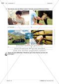 Landeskunde - Üben und Anwenden des Wortschatzes Preview 13