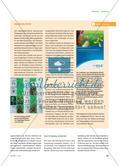 Fliegertypen aus der Pflanzenwelt - Die bionische Entwicklungsmethode nachempfinden Preview 4