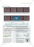 Kriechtierchen in meinem Körper? - Szenische Darstellung der amöboiden Bewegung eines Granulozyten Preview 2