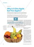 Why Is It One Apple but Two Apples? - Erste Grammatik im Englischunterricht der Grundschule Preview 1